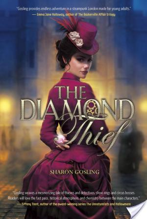 THE DIAMOND THIEF  by Sharon Gosling